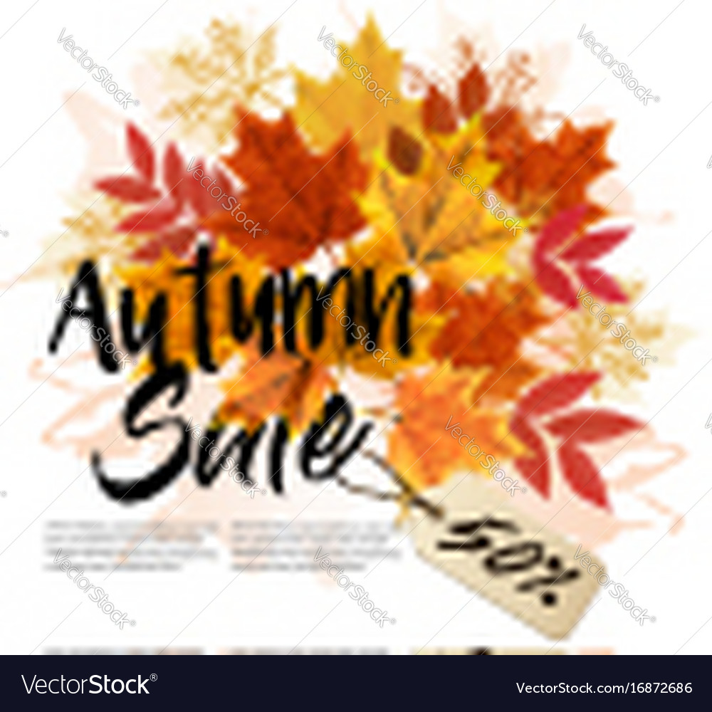 Autumn sale card with colorful leaves