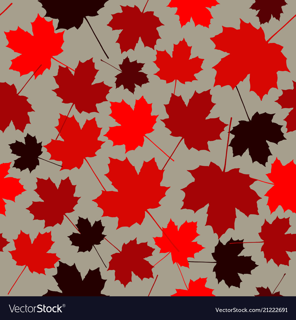 Seamless pattern from maple leaves red maple