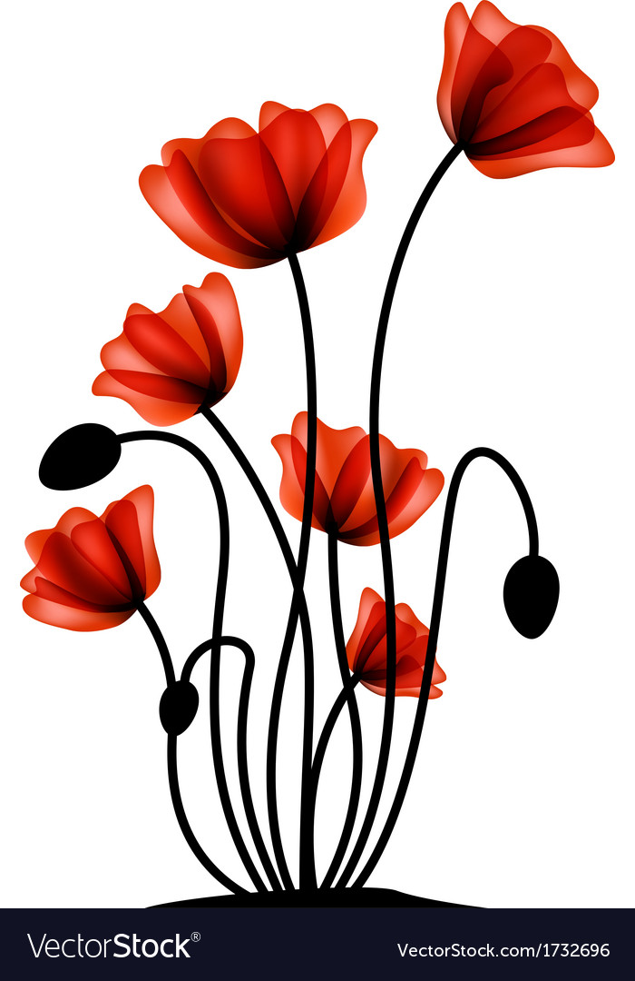 Abstract red poppy