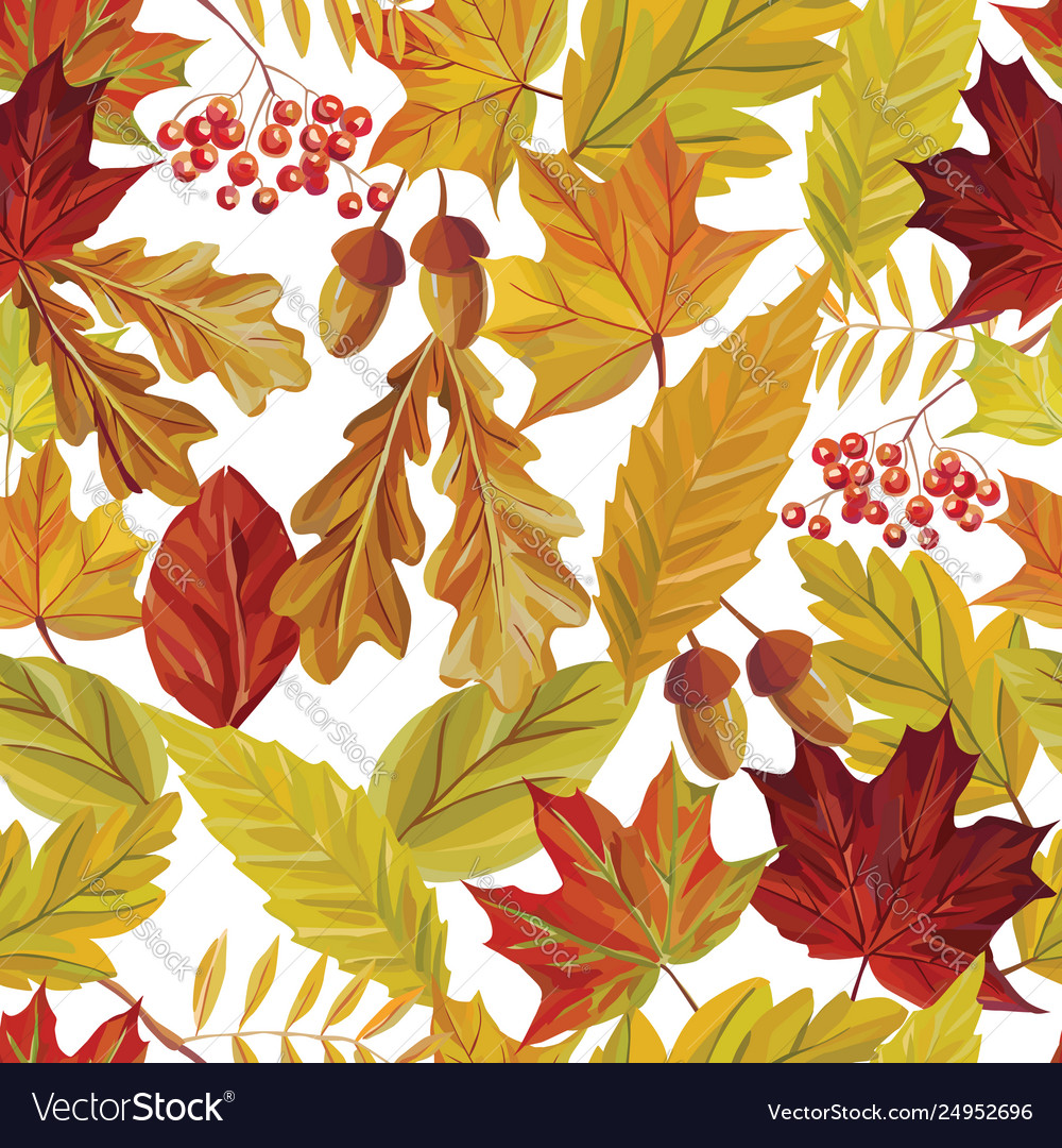 Autumn leaves seamless pattern white background