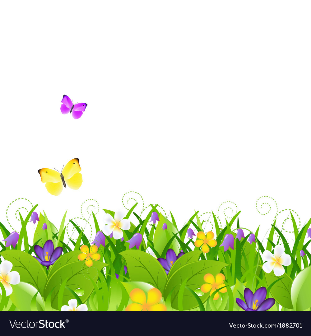 Flowers With Grass With Butterfly vector image