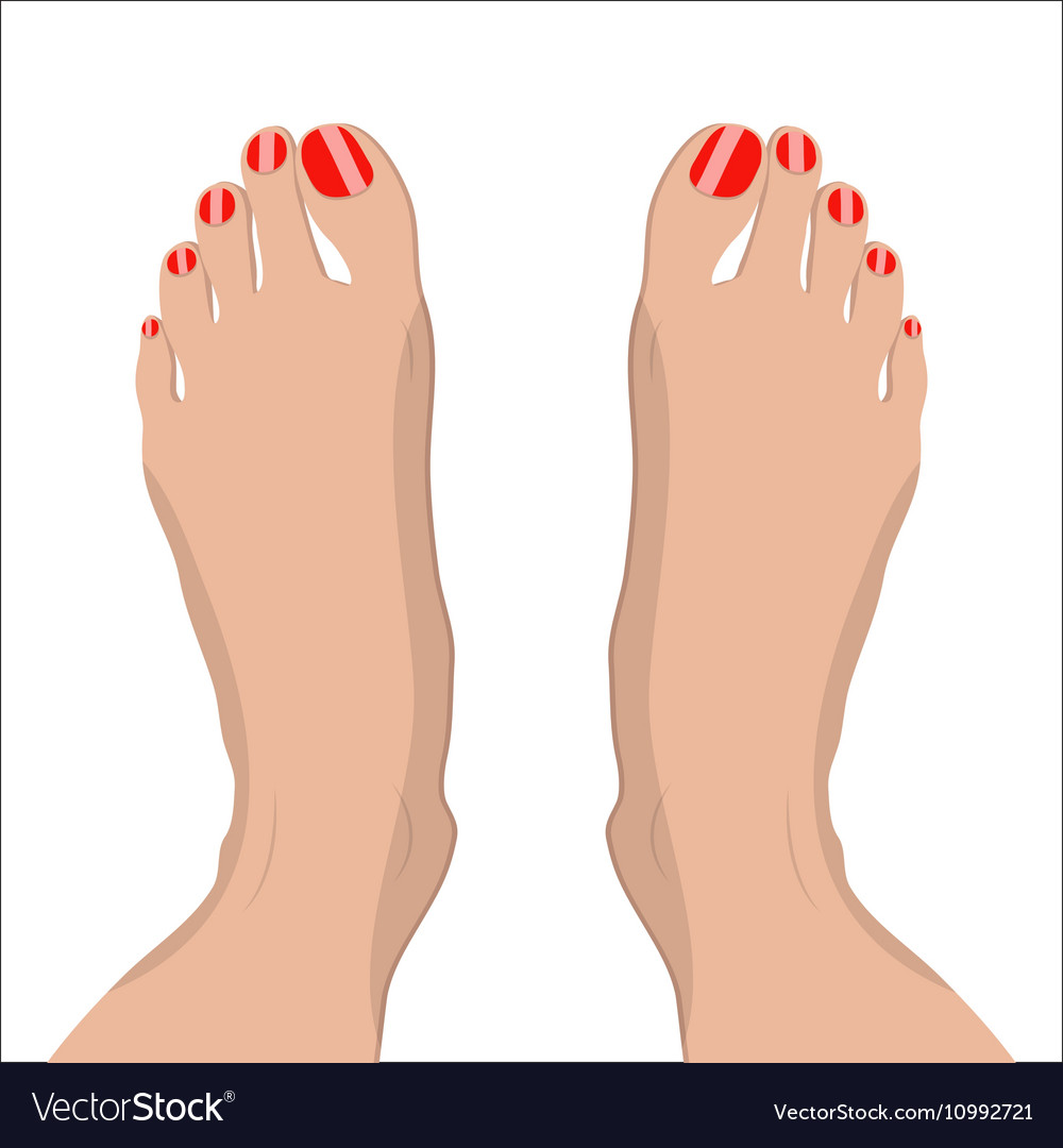 female feet with red pedicure royalty free vector image vectorstock