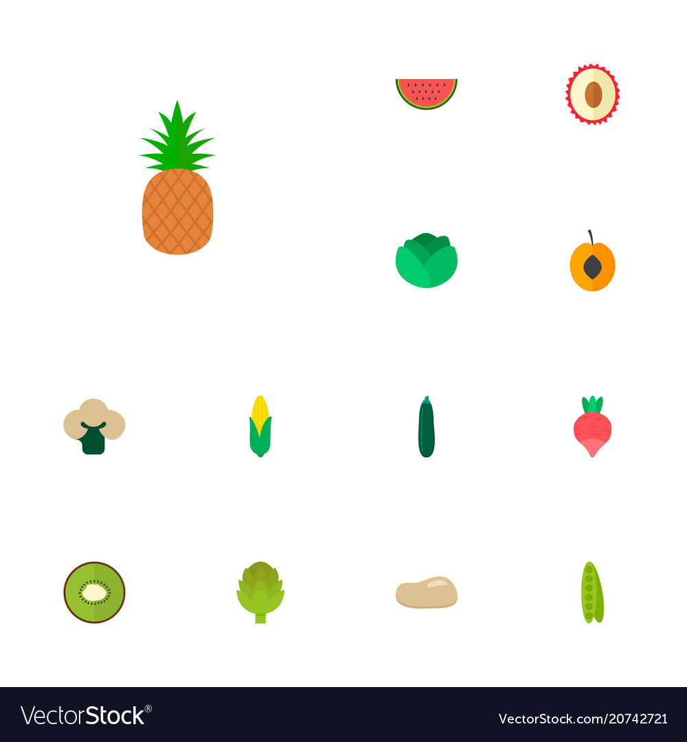 Set of icons flat style symbols with watermelo vector image