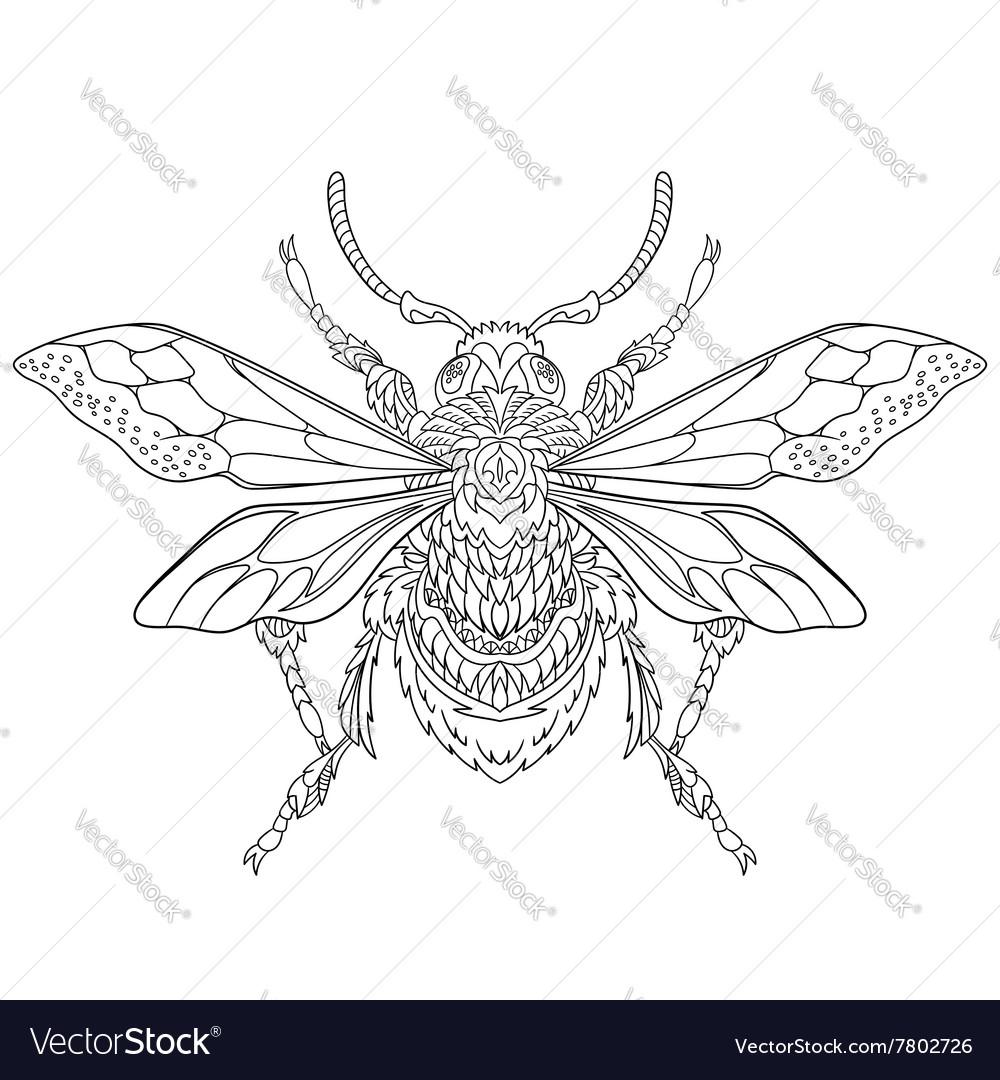 Entangle stylized cartoon beetle insect