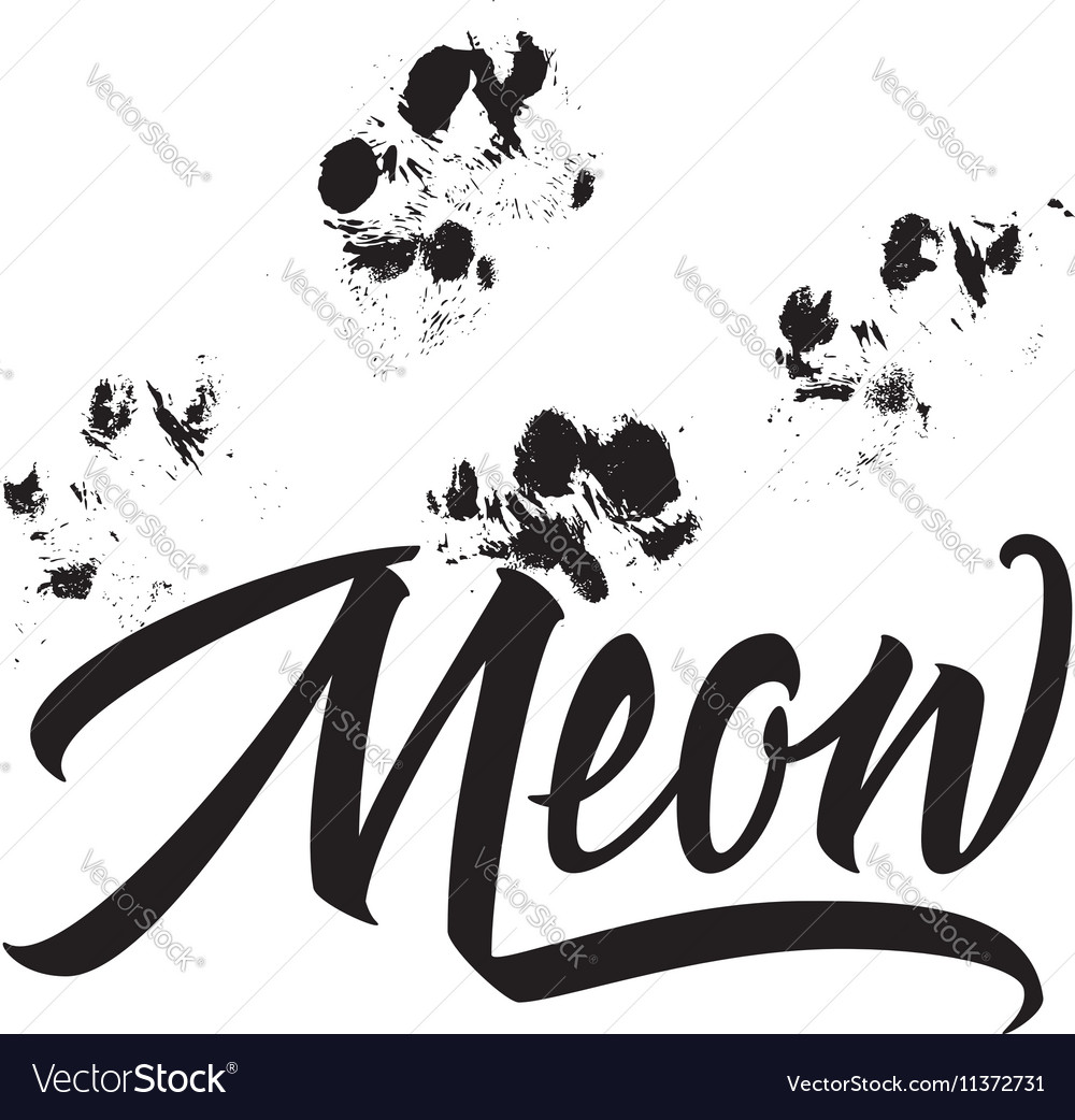 t shirt printing logo template meow hand drawn vector image