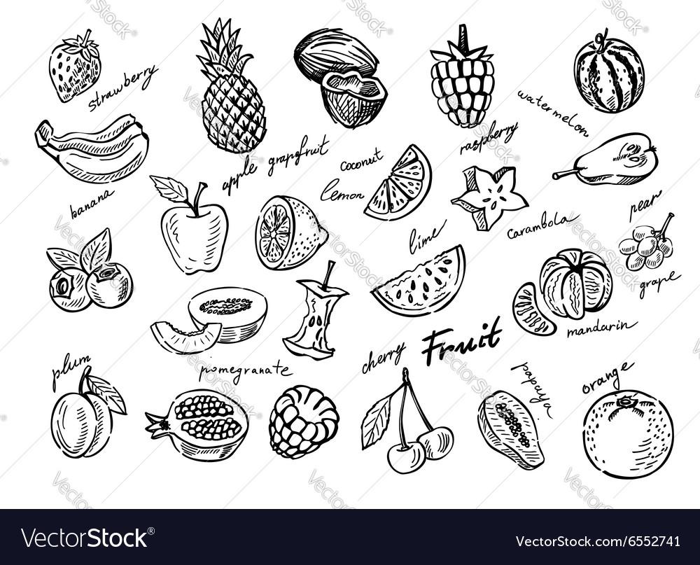 Fruit stack sketch