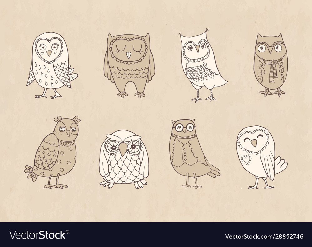 Set line owls stylized hand drawing on