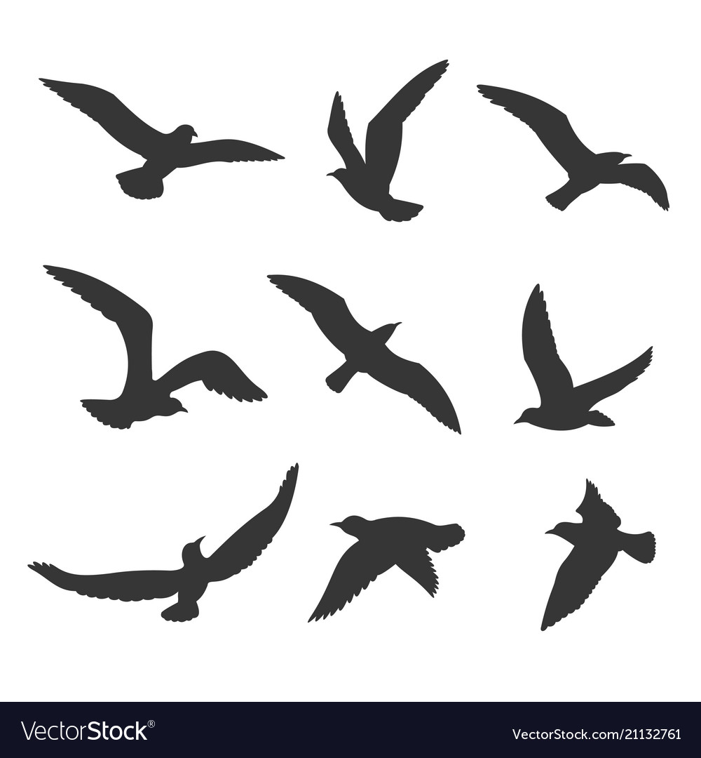 Flying Birds Silhouette Set Royalty Free Vector Image