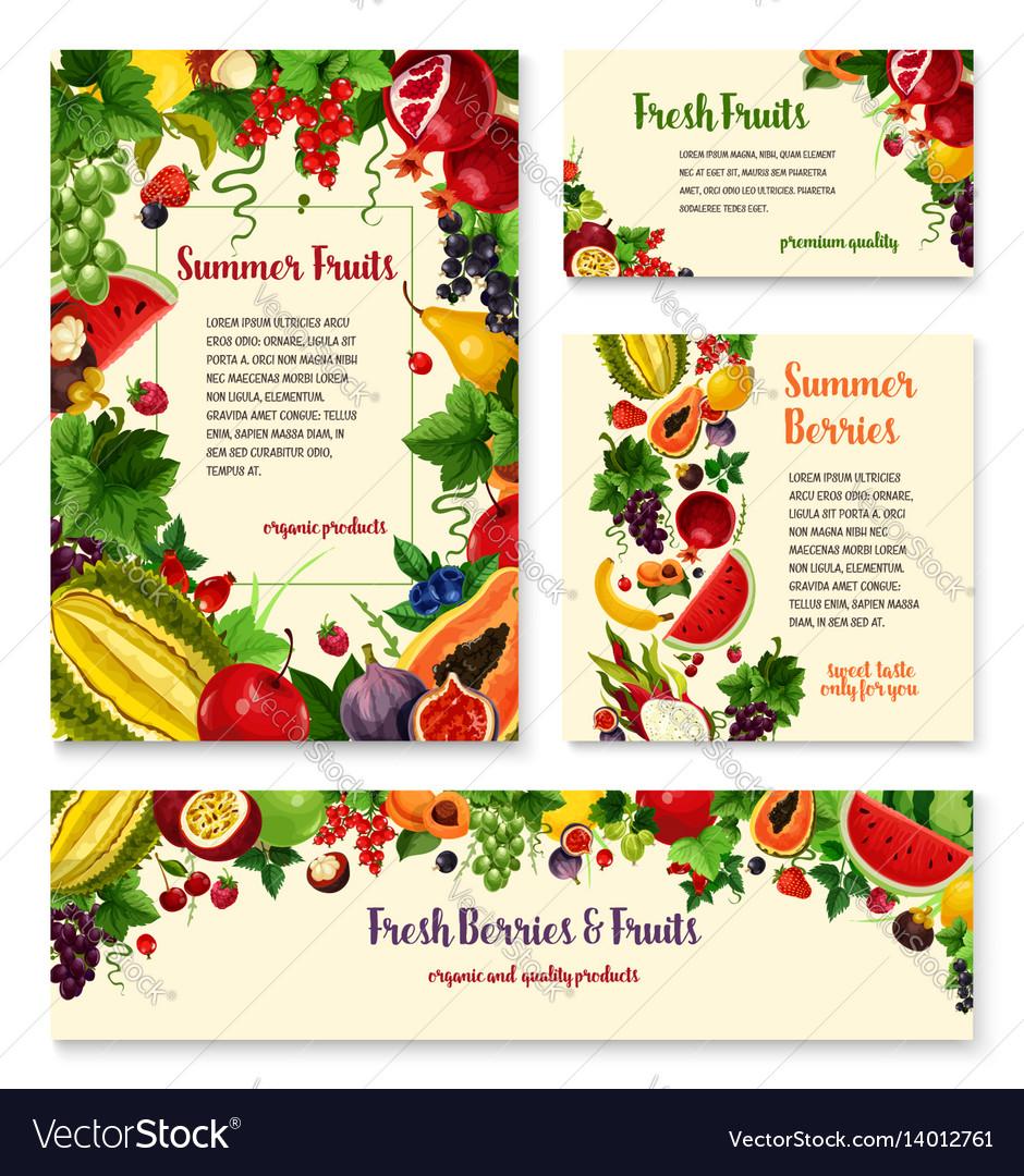 Fruit berry banner template set for food design vector image