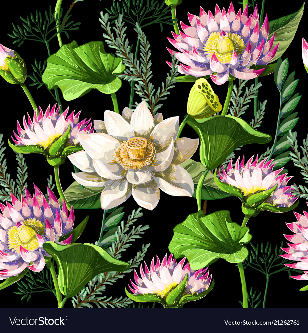 Print for t-shirt or poster with waterlily