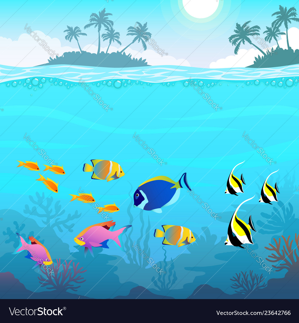 Beautiful underwater world seascape fish and sea
