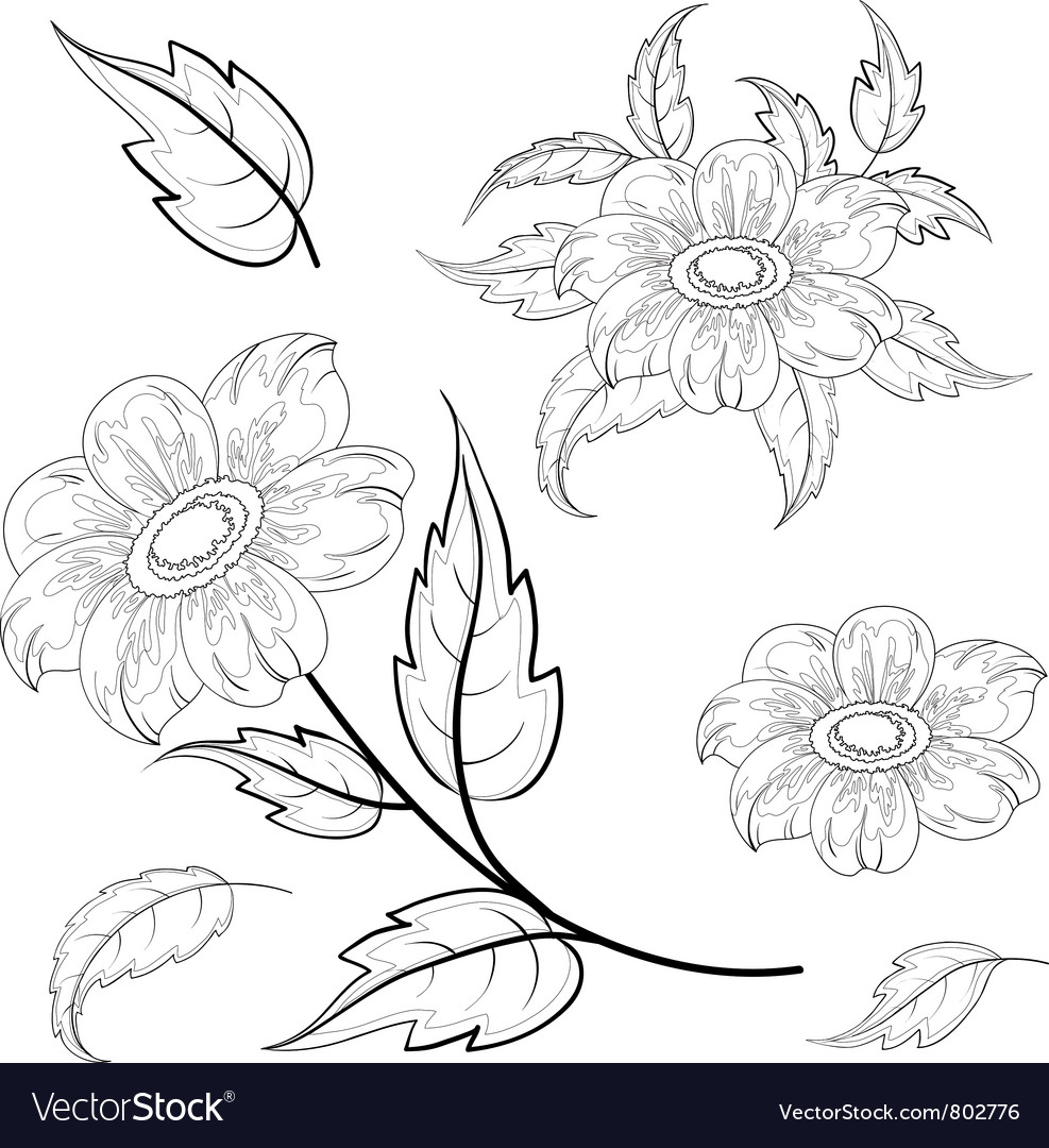 Flowers and leaves dahlia contours vector image