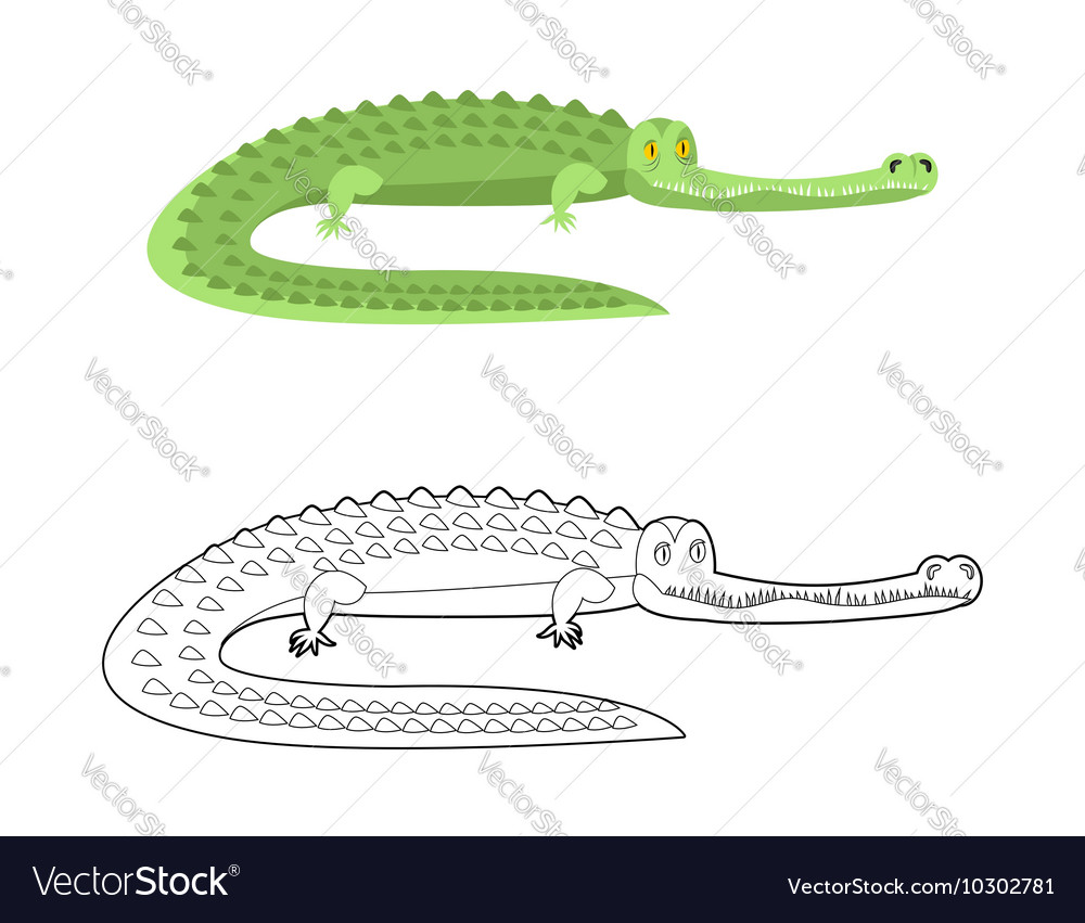 Crocodile Coloring book Good caiman Wild animal vector image