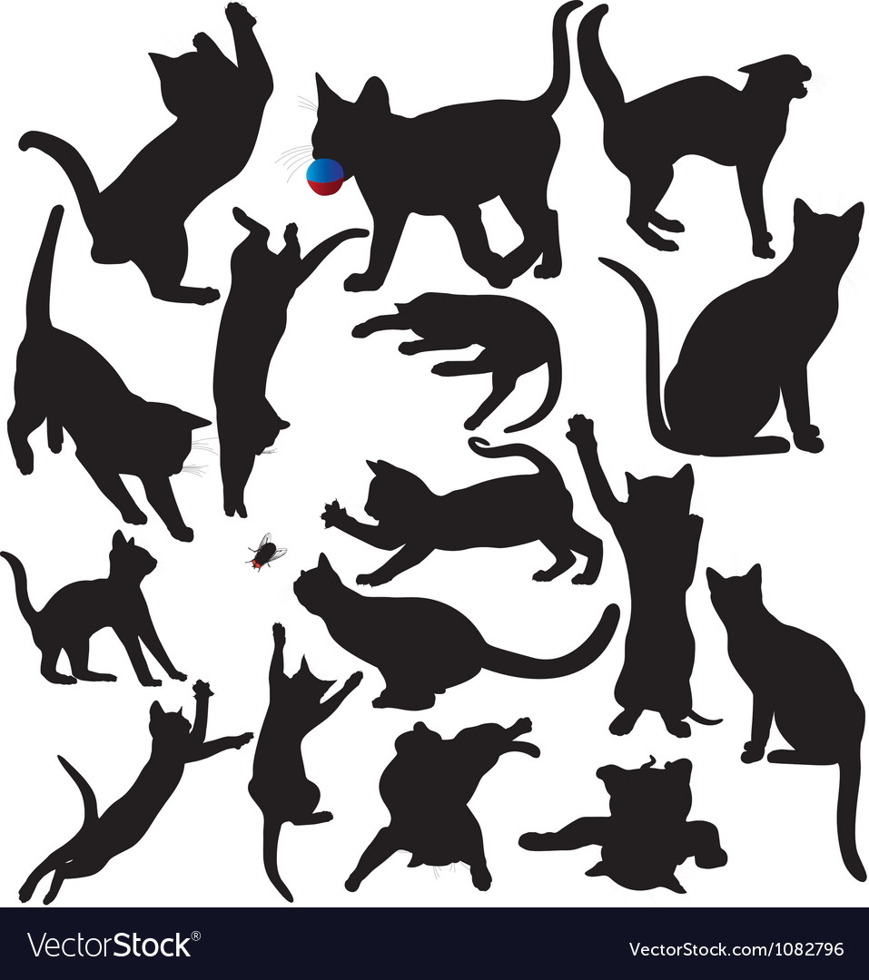 Cat and kitten silhouettes vector image