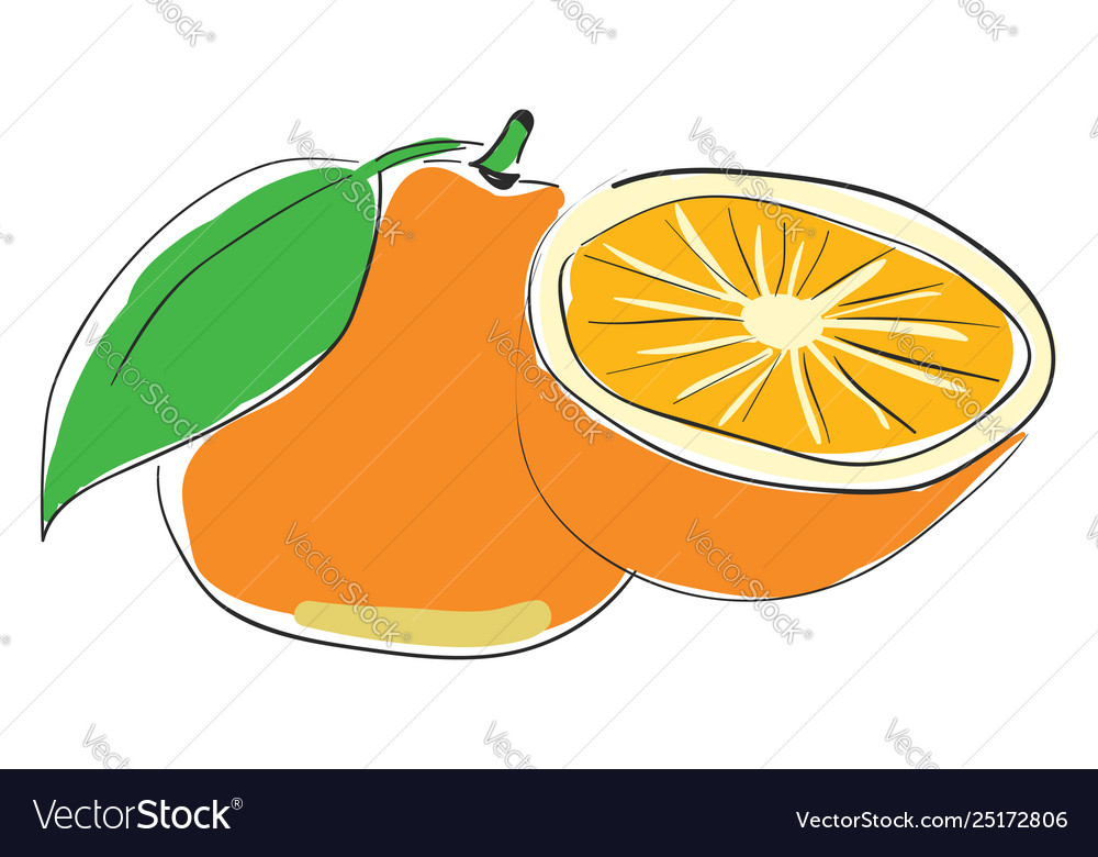Fresh Container Orange Juice Or Color Royalty Free Vector,What Colour Is Orange And Blue