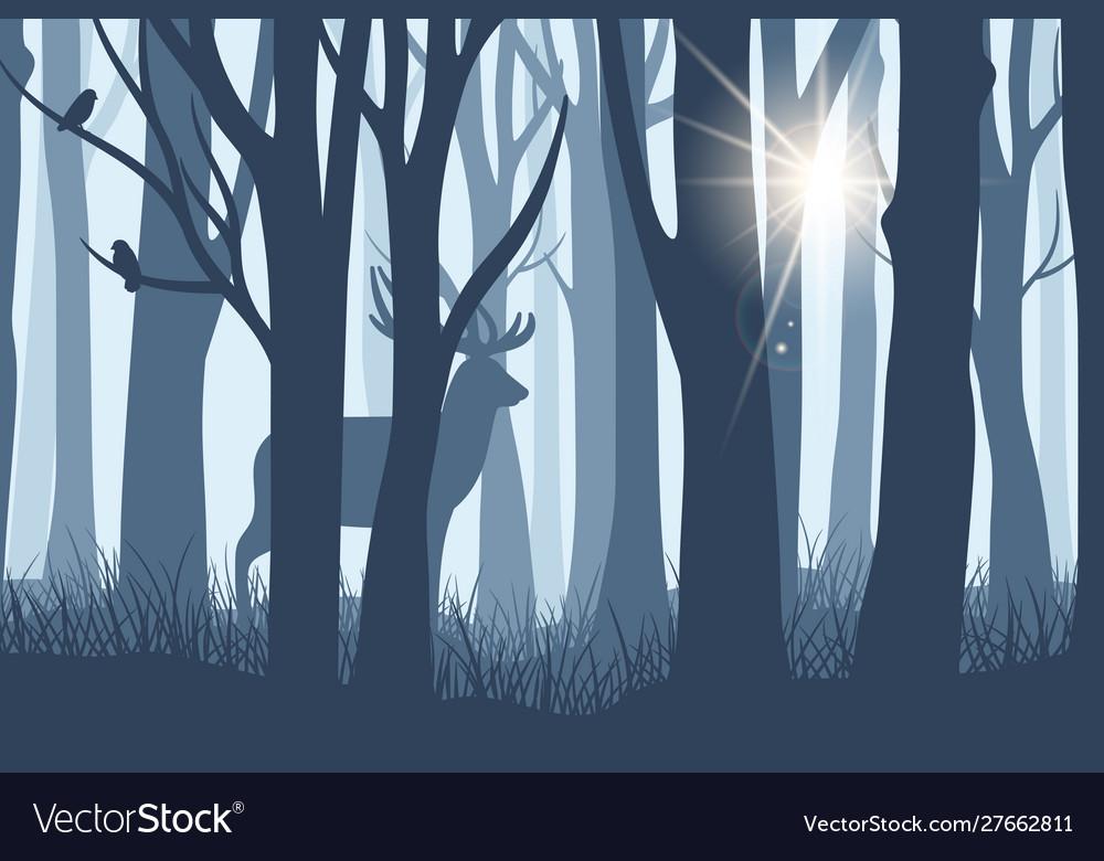 Deer in forest landscape