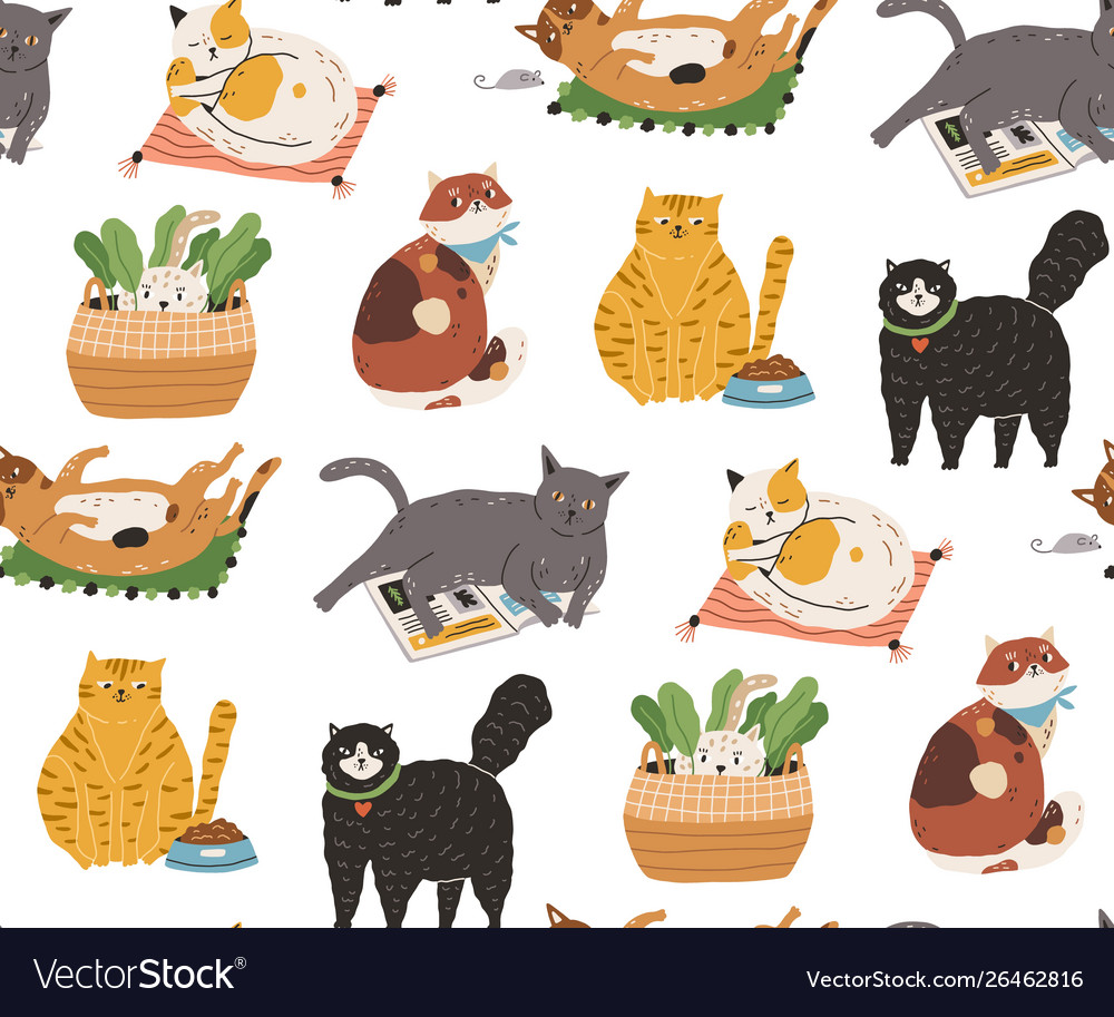 Seamless pattern with cute funny cats sleeping