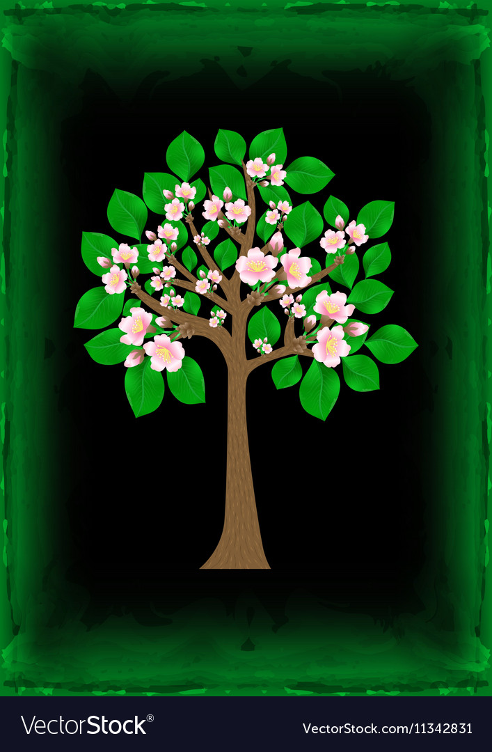 Blossoming tree with background