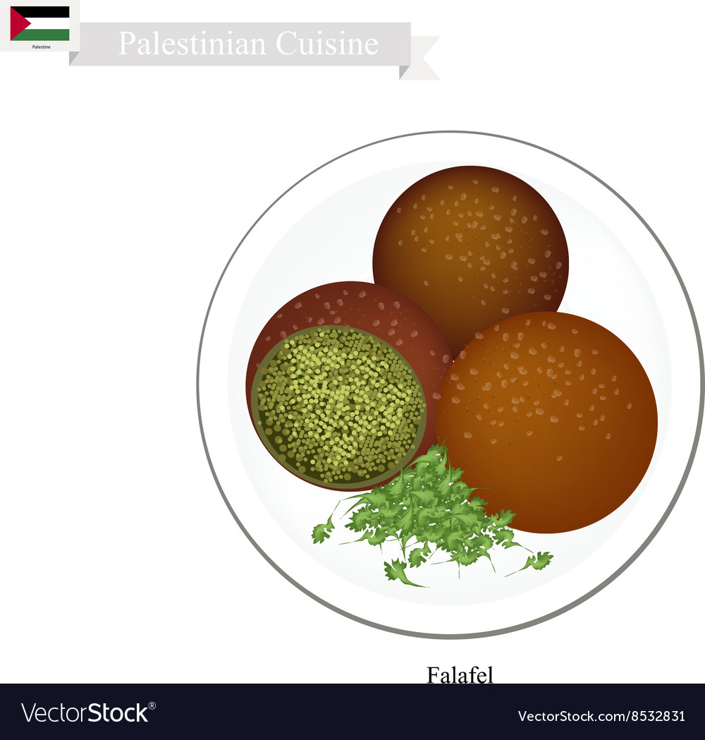 Falafel or Palestinian Deep Fried Ball of Chickpea vector image