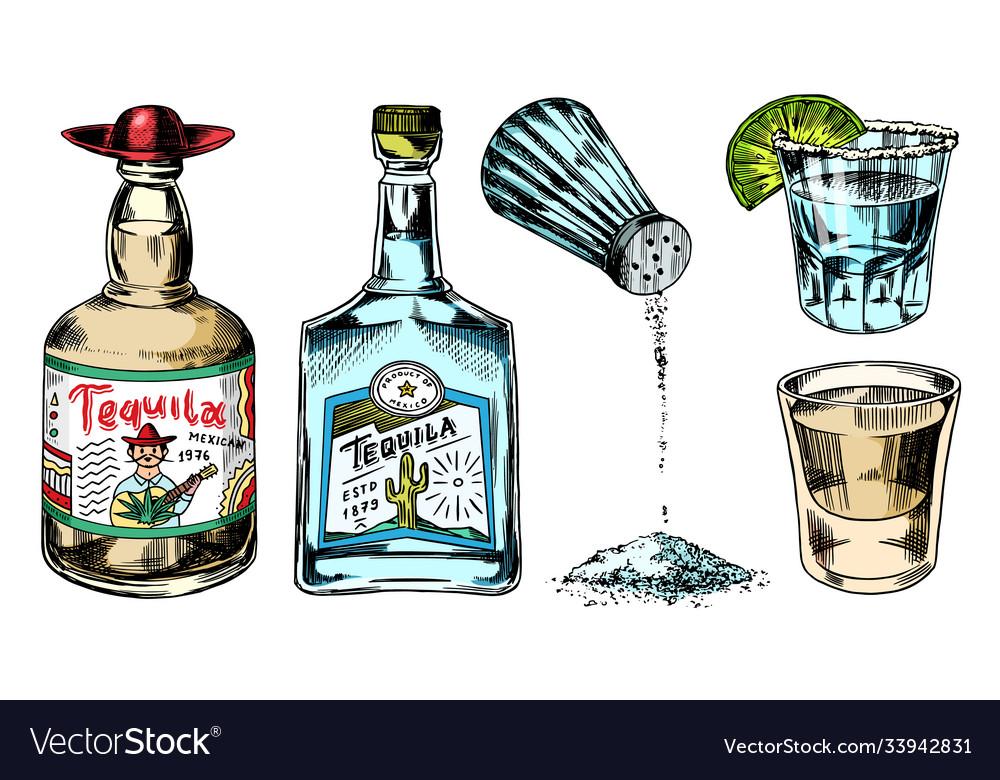 Tequila bottles and salt shaker glass shots