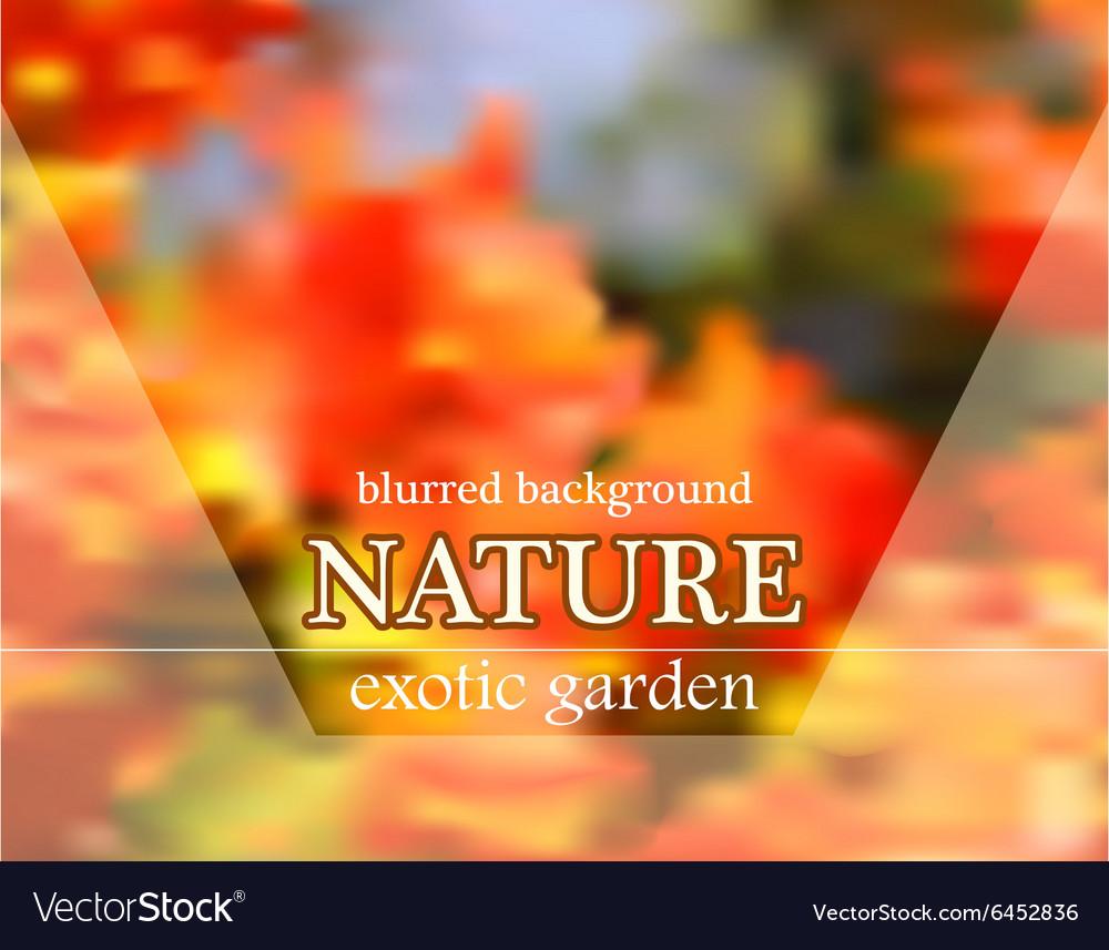 Blurred floral background with garden design