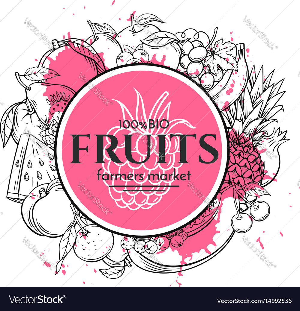 Poster template with hand drawn fruits vector image