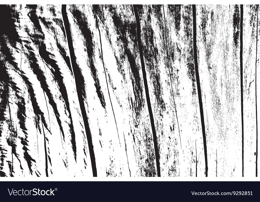 Dry Wooden Texture