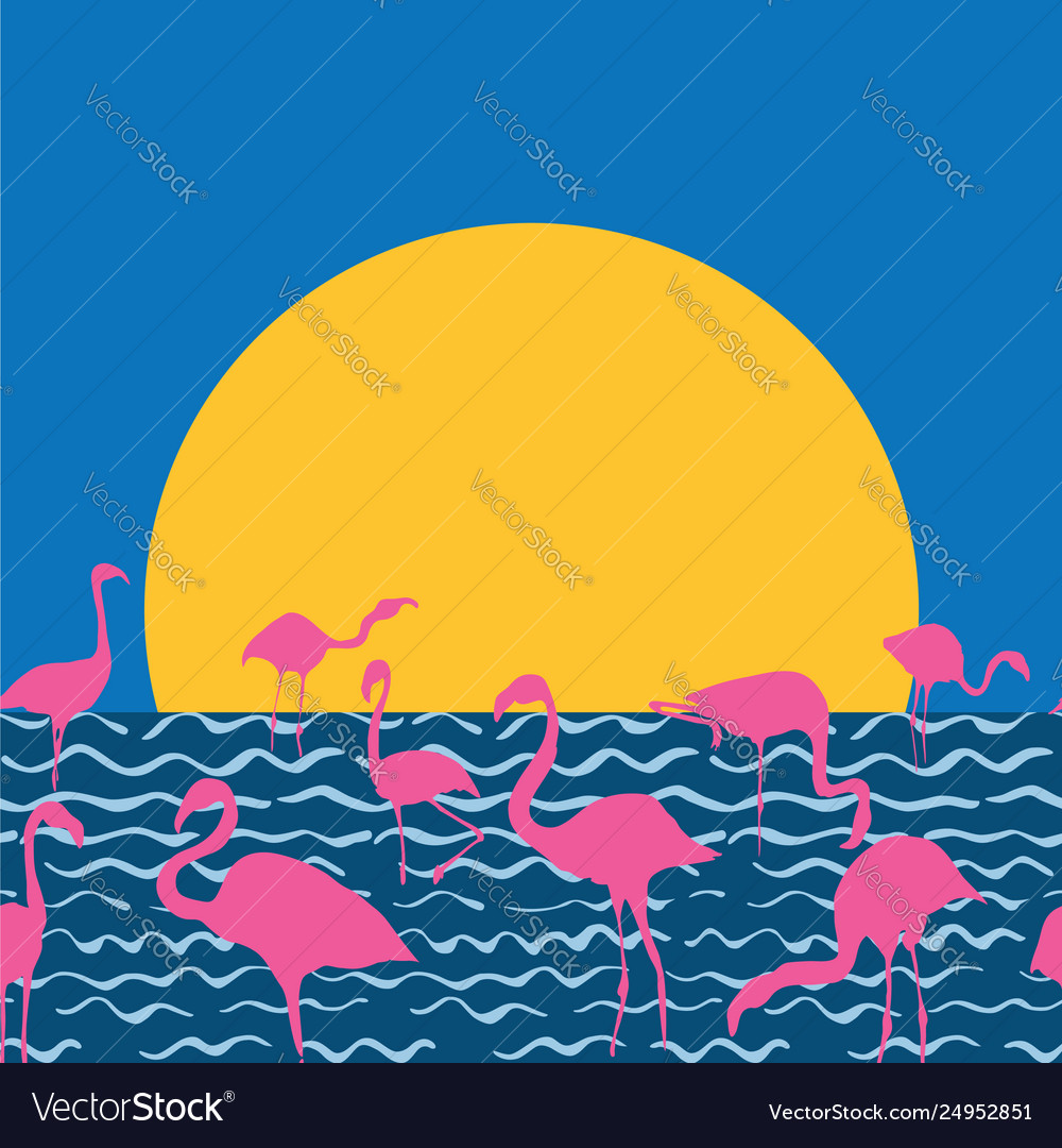 Flamingo on sea sitting sun