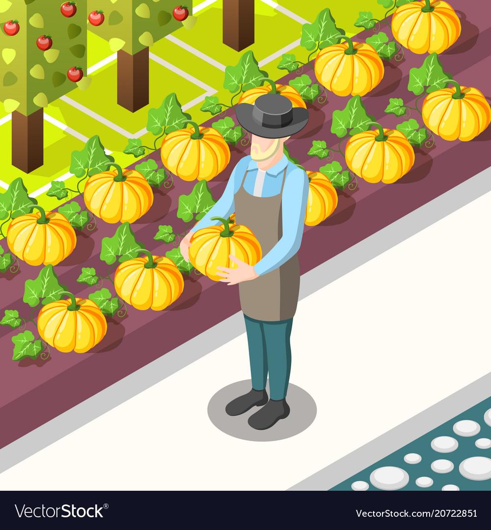Organic food isometric background