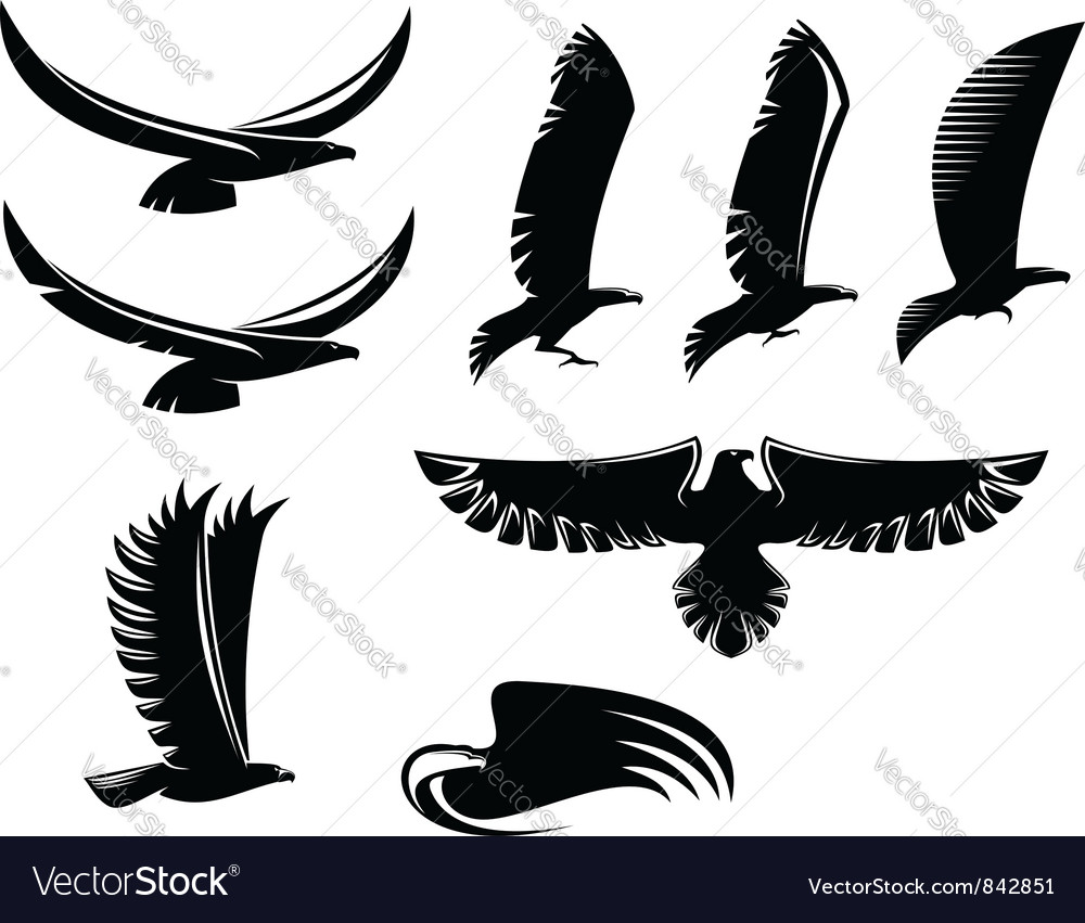 Set of heraldry black birds