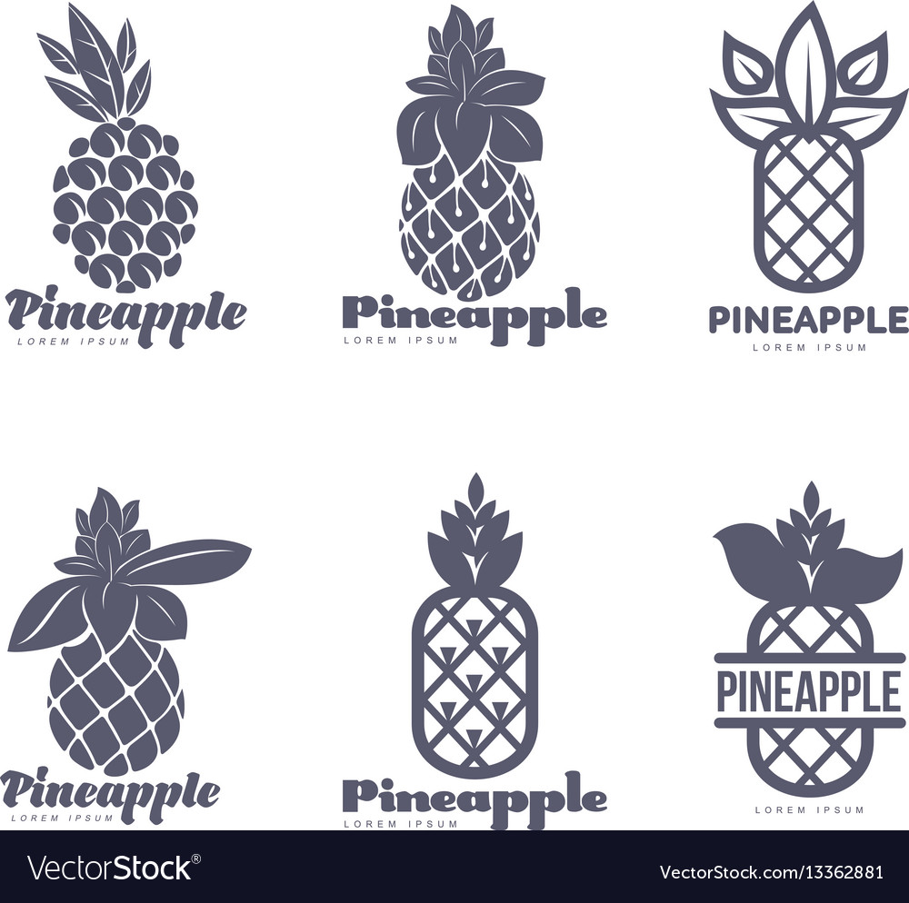 Set of black and white graphic pineapple logo
