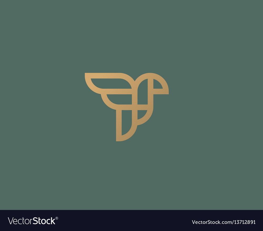 Abstract bird logo design creative eagle line