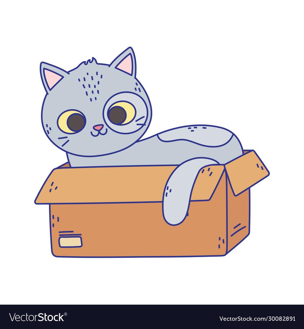 Cute gray cat lying in cardboard box cartoon