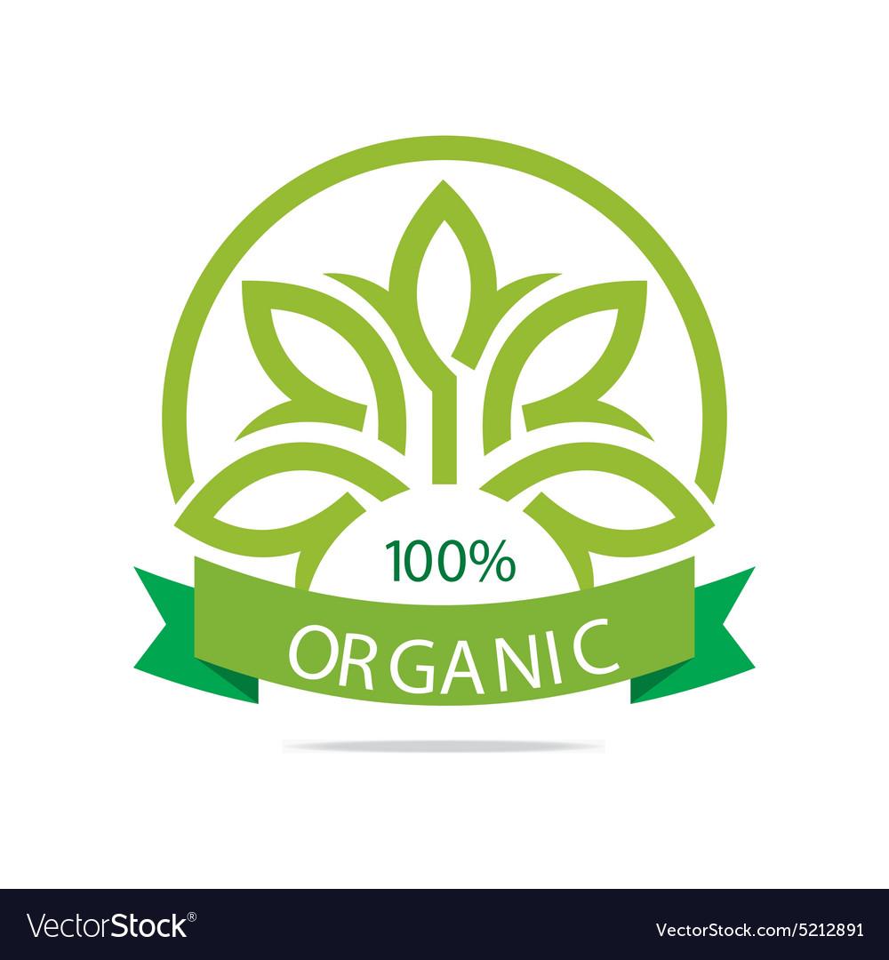 Natural product organic healthy garden design vector image on VectorStock