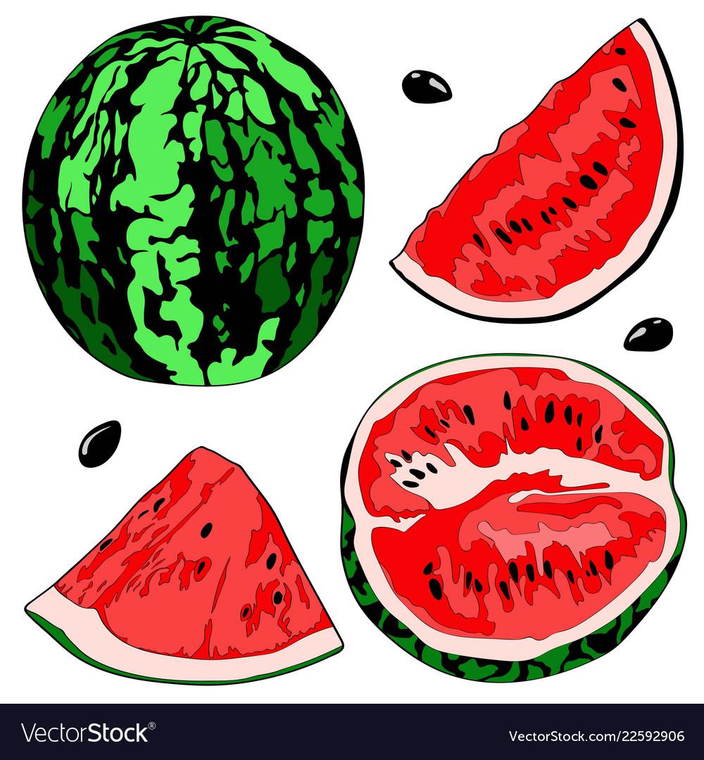 A watermelon half