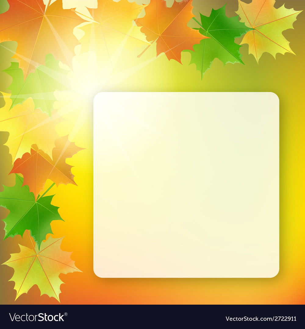 School board on colorful background vector image
