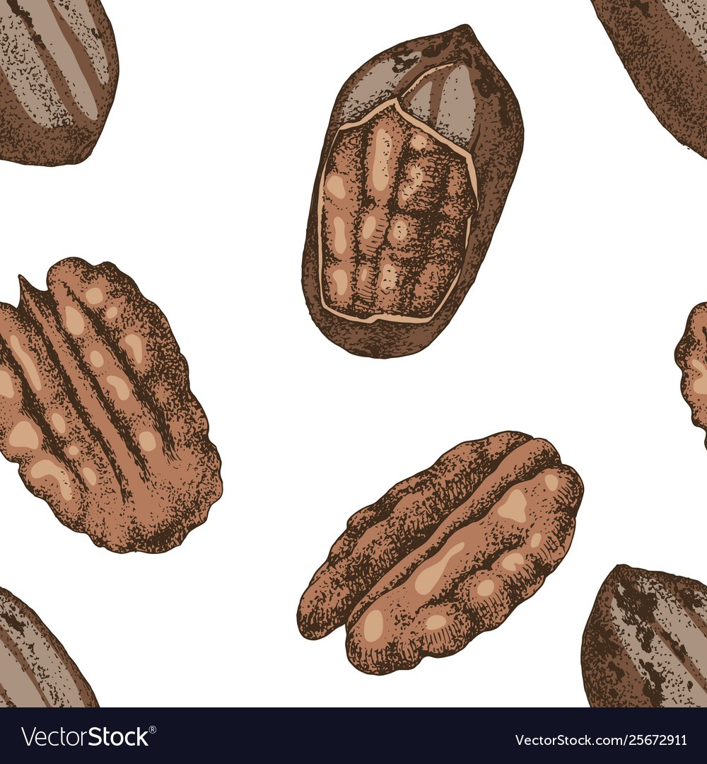 Seamless pattern with hand drawn pecan nuts