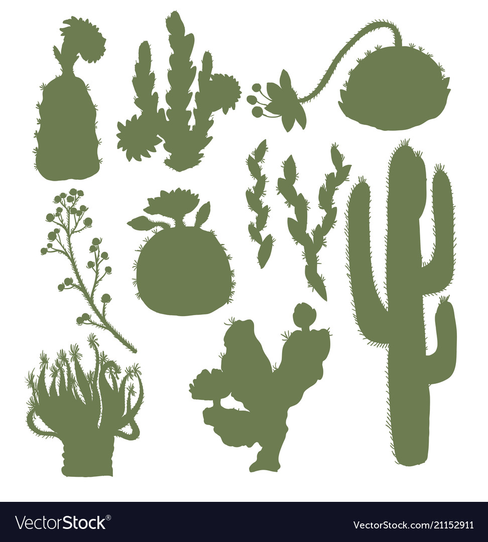 Silhouettes of cacti with flowers isolated