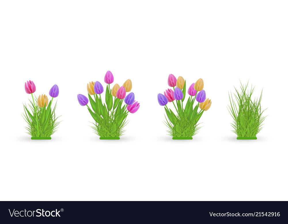 Spring floral tulip and grass bundles of different