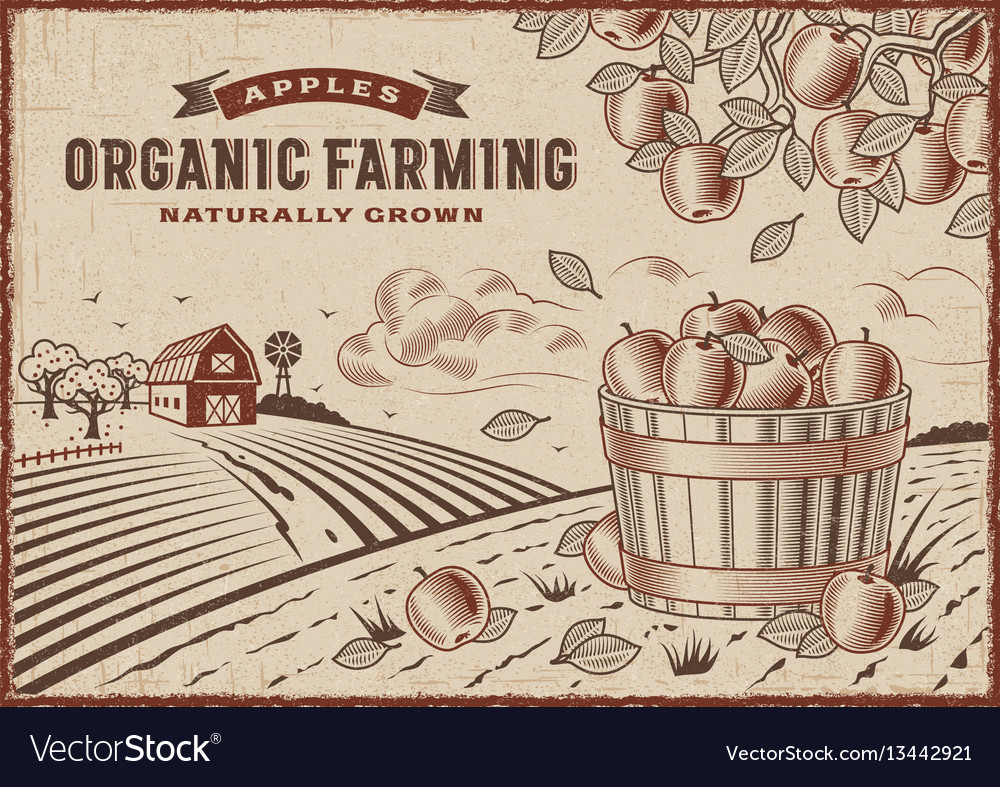 Apple organic farming landscape
