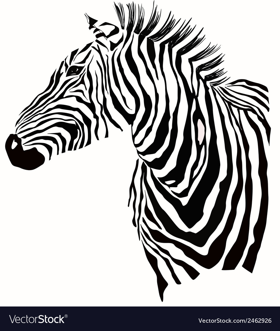 animal of zebra silhouette royalty free vector image rh vectorstock com zebra vector pattern zebra vector tileable