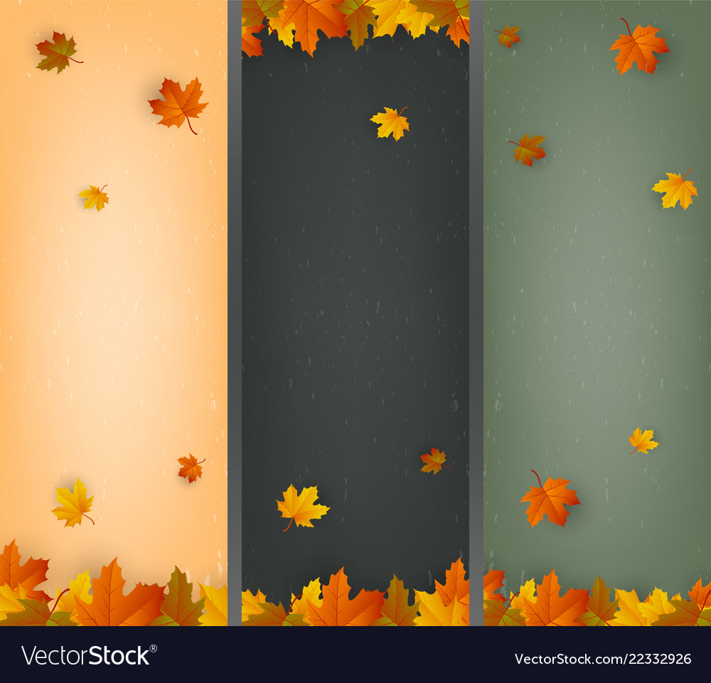 Autumn background collection falling leaves