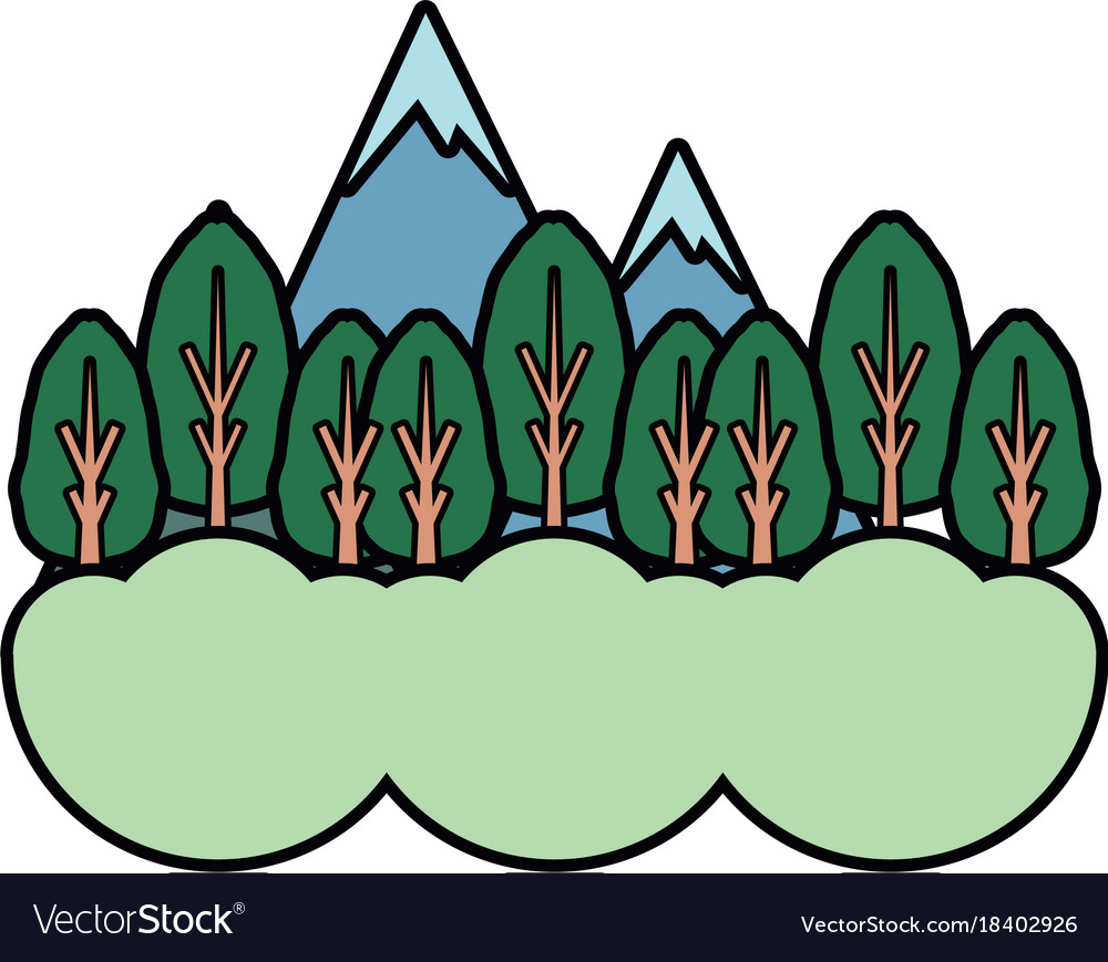 Natural forest vector image
