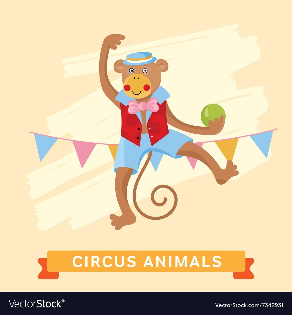 Circus Monkey animal series