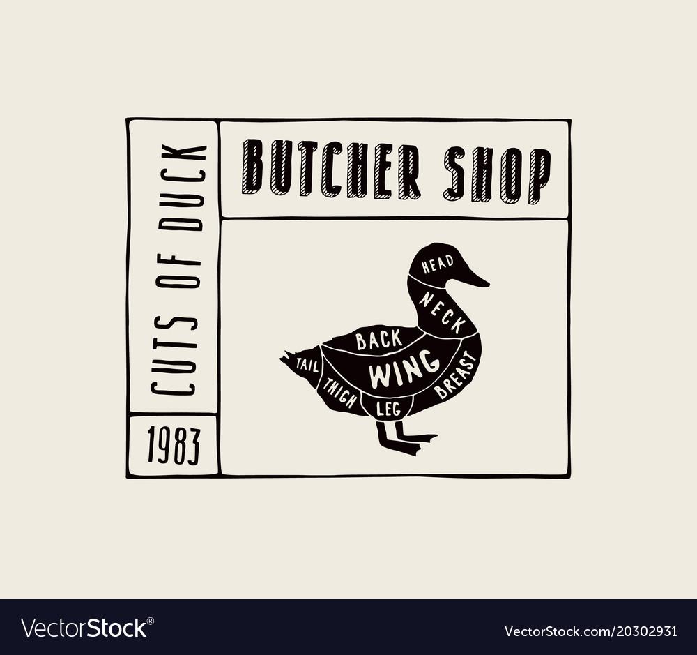 stock duck diagram vector 20302931 stock duck diagram royalty free vector image vectorstock