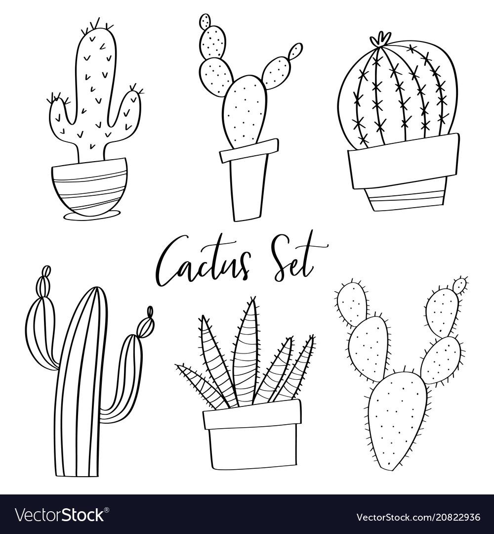 Hand drawn cactus set doodles vector image