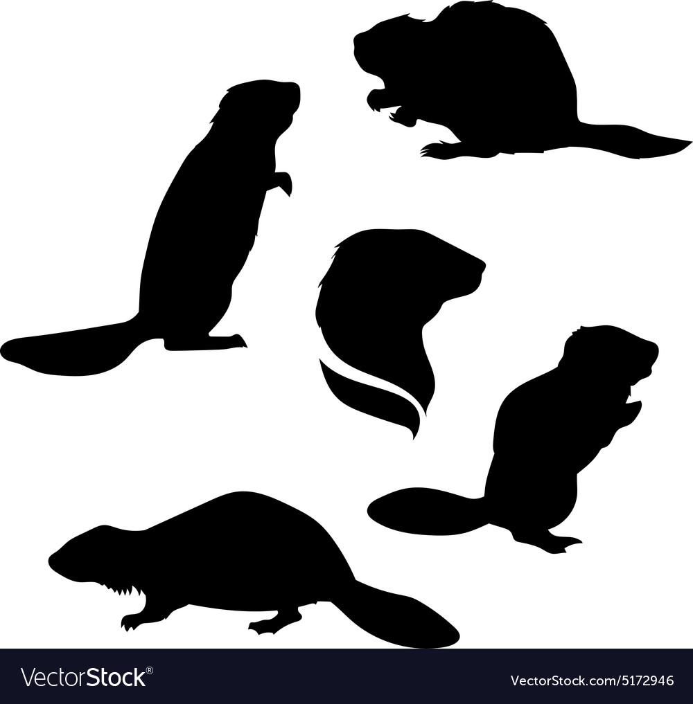 Beaver set