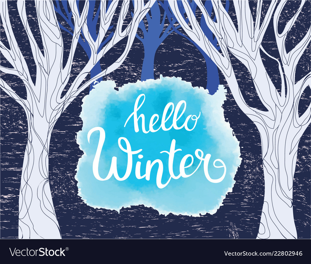 Forest with trees background and hello winter
