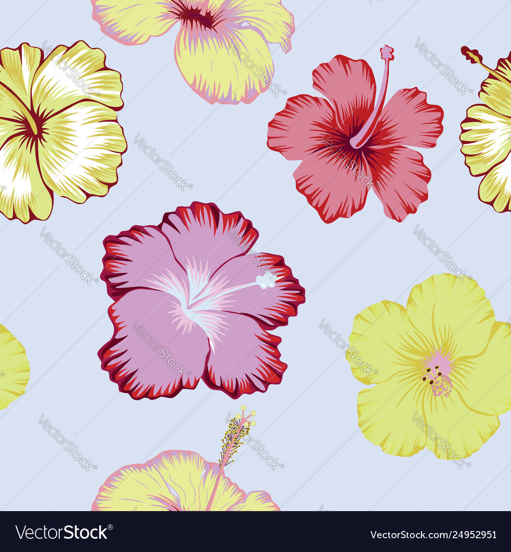 Hibiscus flowers abstract color seamless