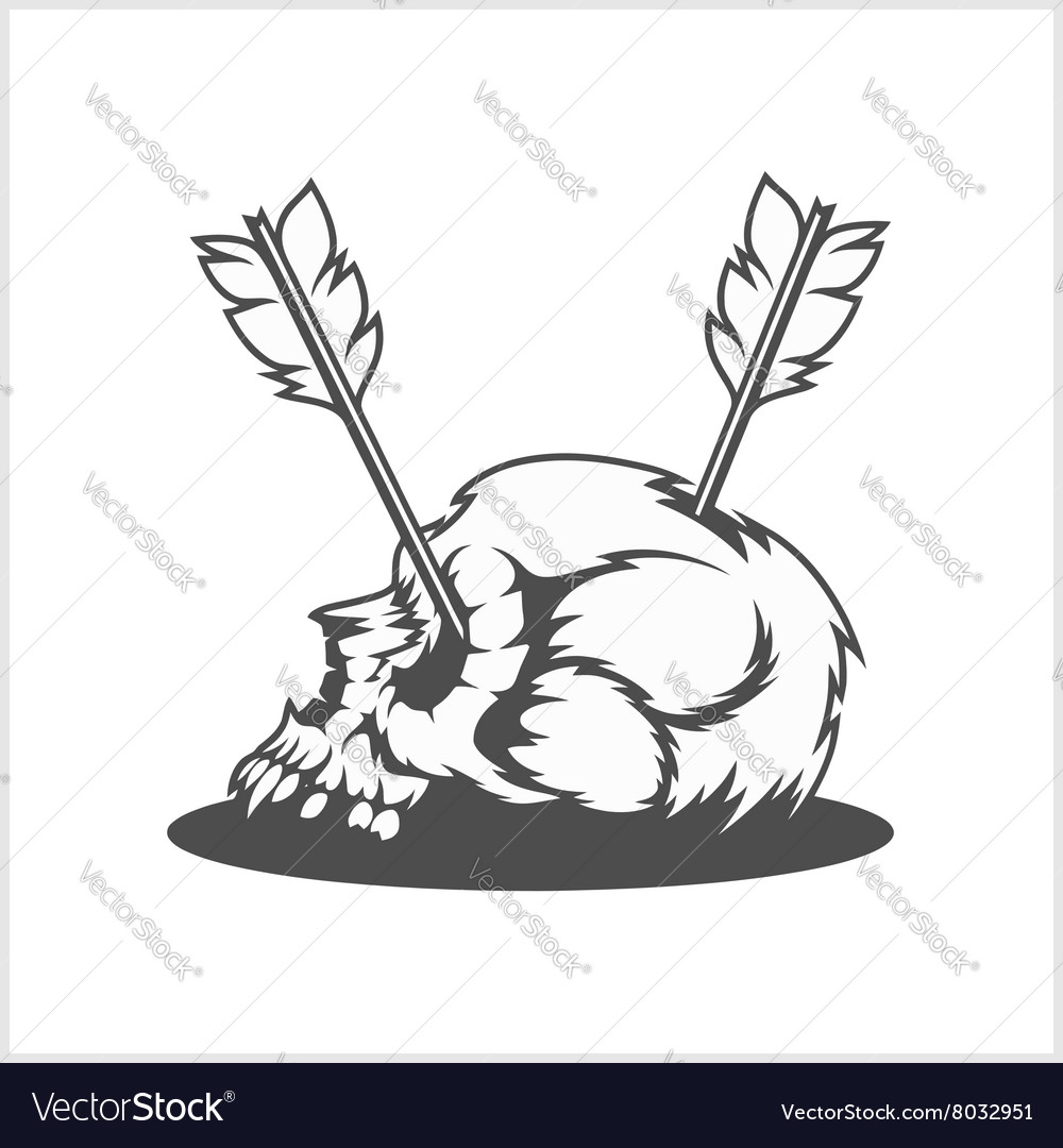 Skull with arrows vector image